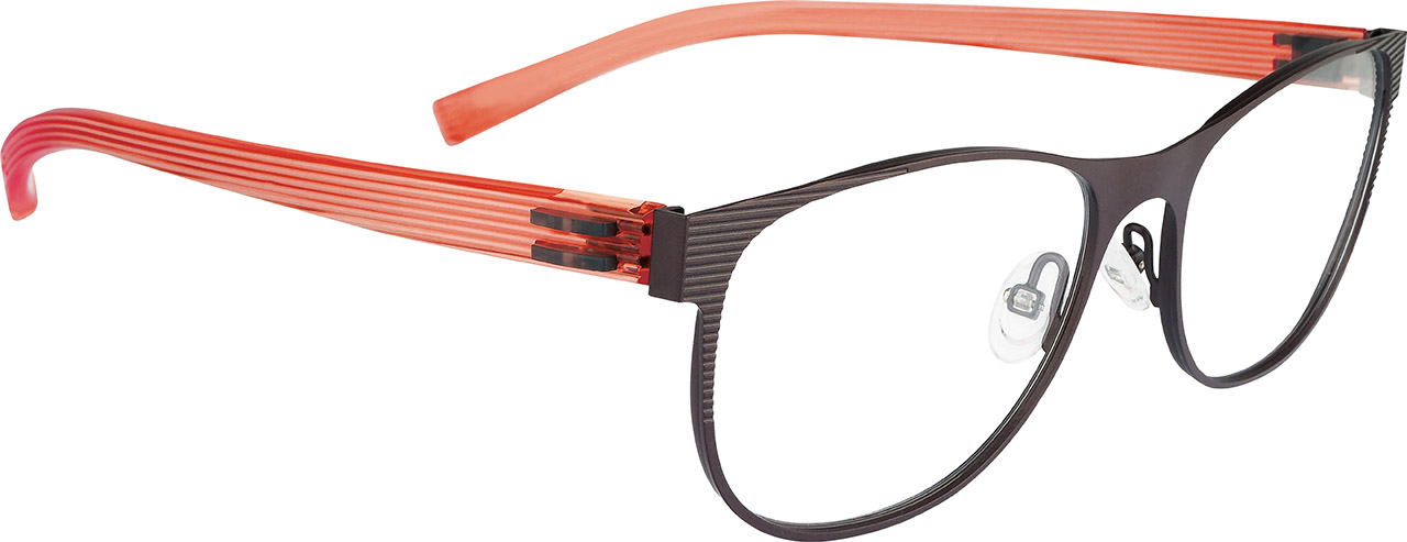 Dilem Eyewear Interchangeable Temples New Look Eye Wear